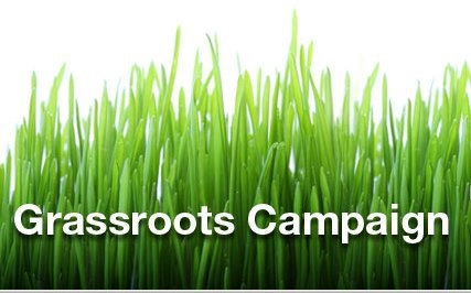 Grassroots Campaign Volunteer Opportunities